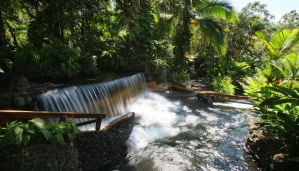 1 - Tabacon - Hot Springs (1)